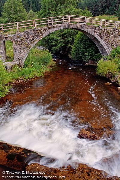 вековни борови гори и се стига до Кемера, Сводестия мост