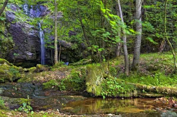 40 метров водопад с дълбок вир в който често се къпят мечките