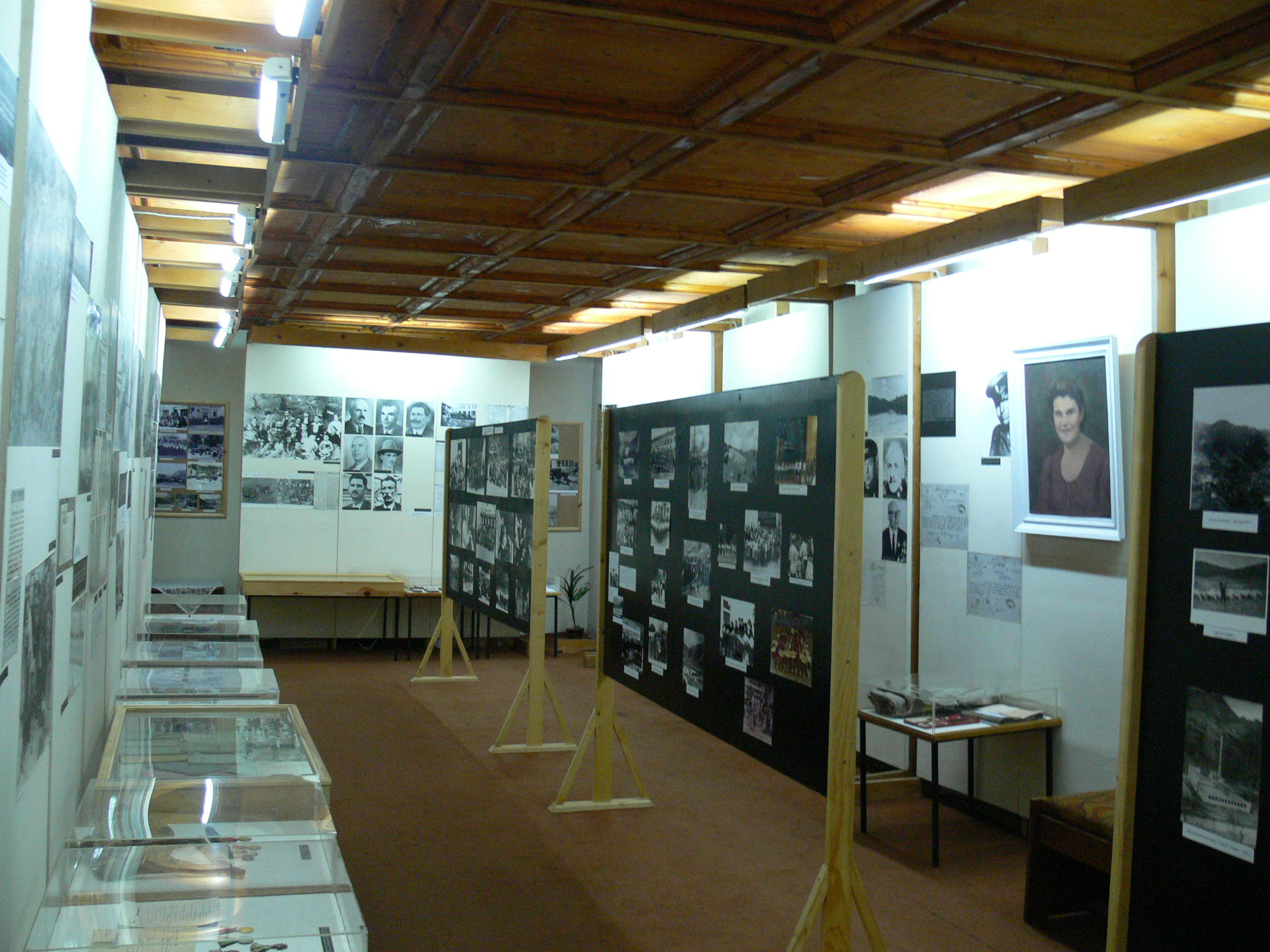 музей в град девин - културата